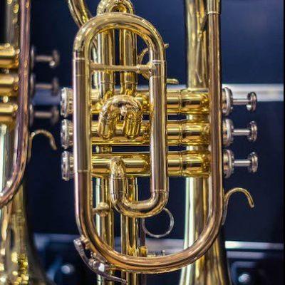 trompettes-et-cornets